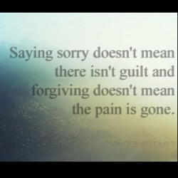 Saying sorry doesn't mean 