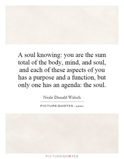 A soul knowing: you are the sum 