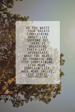 AS YOU WASTE 