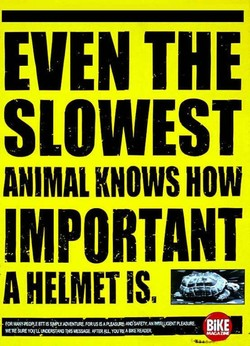 EVEN THE 