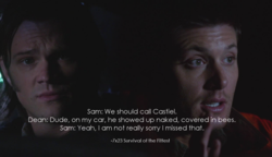 Sam: We should call Castiel. 