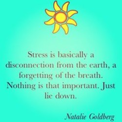 Stn•ss is basicallv a 