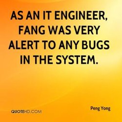 AS AN IT ENGINEER, 