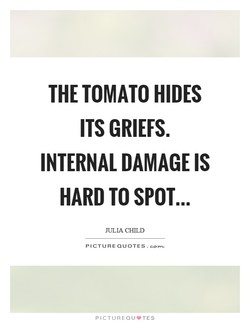 THE TOMATO HIDES 