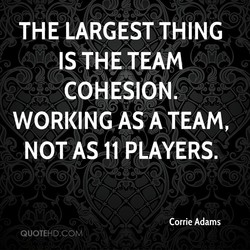 THE LARGEST THING 