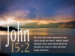 HE CUTS OFF EVERY BRANCH IN ME 