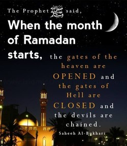 The Prtophet 