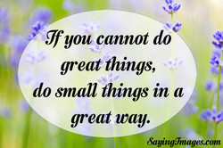 T you cannot do 
