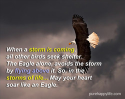 When a storm is coming 
