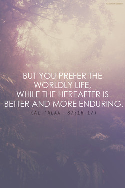 BUT YOU PREFER THE 