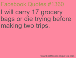 I will carry 17 grocery 