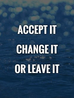 ACCEPT IT CHANGE IT OR LEAVE IT