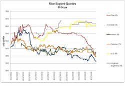Rice Export Quotes 