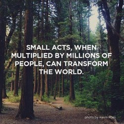 SMALL ACTS, WHEN. 