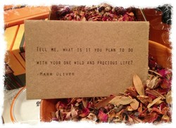 TELL ME, IS IT YOU PLAN TO DO 