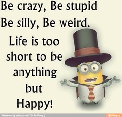 Be crazy, Be stupid 