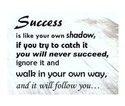 access is like your own shadow, if you try to catch it you will never succeed, ignore it and walk in your own way, and it will follow you..