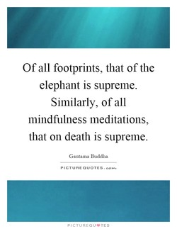 Of all footprints, that of the 