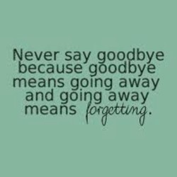 Never say goo€bye 