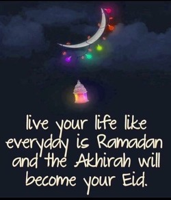 live our life like 