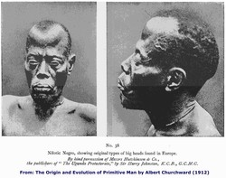 No. 3S 