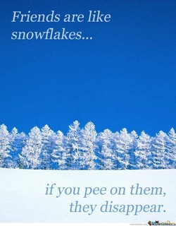 Friends are like 