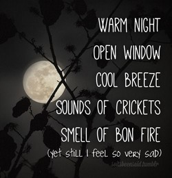 WARM NIGHT 