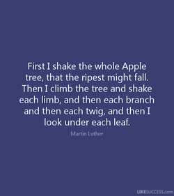 First I shake the whole Apple 