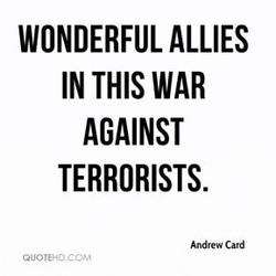 WONDERFUL ALLIES 