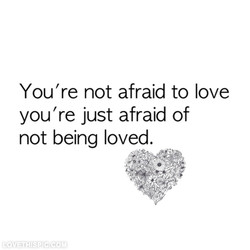 You're not afraid to love 