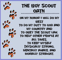 THE eoy SCOUT 