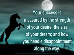 Your success is 