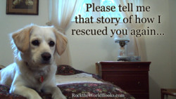 Please tell me 