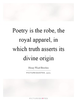 Poetry is the robe, the 