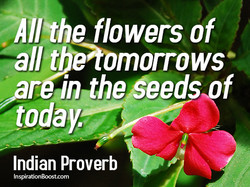 -Allt)le flowers of 