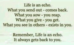 Life is an echo. 