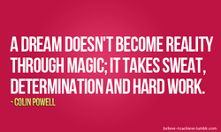 A DREAM DOESN'T BECOME REALITY 