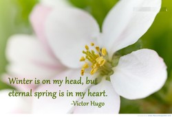 Winter is on my head, but. 