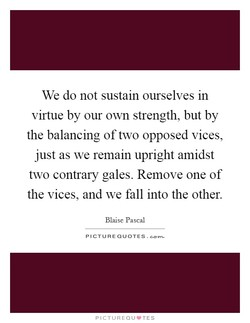 We do not sustain ourselves in 