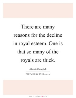 There are many 