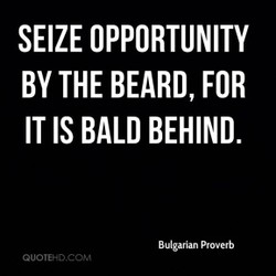 SEIZE OPPORTUNITY 