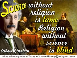 (11) 