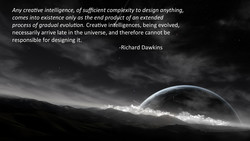Any creative intelligence, of sufficient complexity to design anything, 