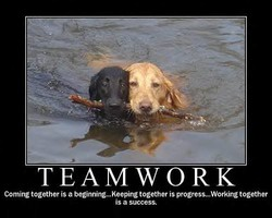 TEAMWORK 