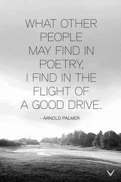 WHAT OTHER 