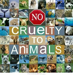 CRUeLTY 