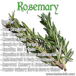 Ropemary 