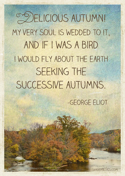 OELICIOUS AUTUMN! 