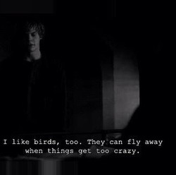 I like birds, too. They ' can fly away 