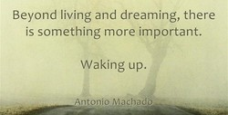 Beyond living and dreaming, there 